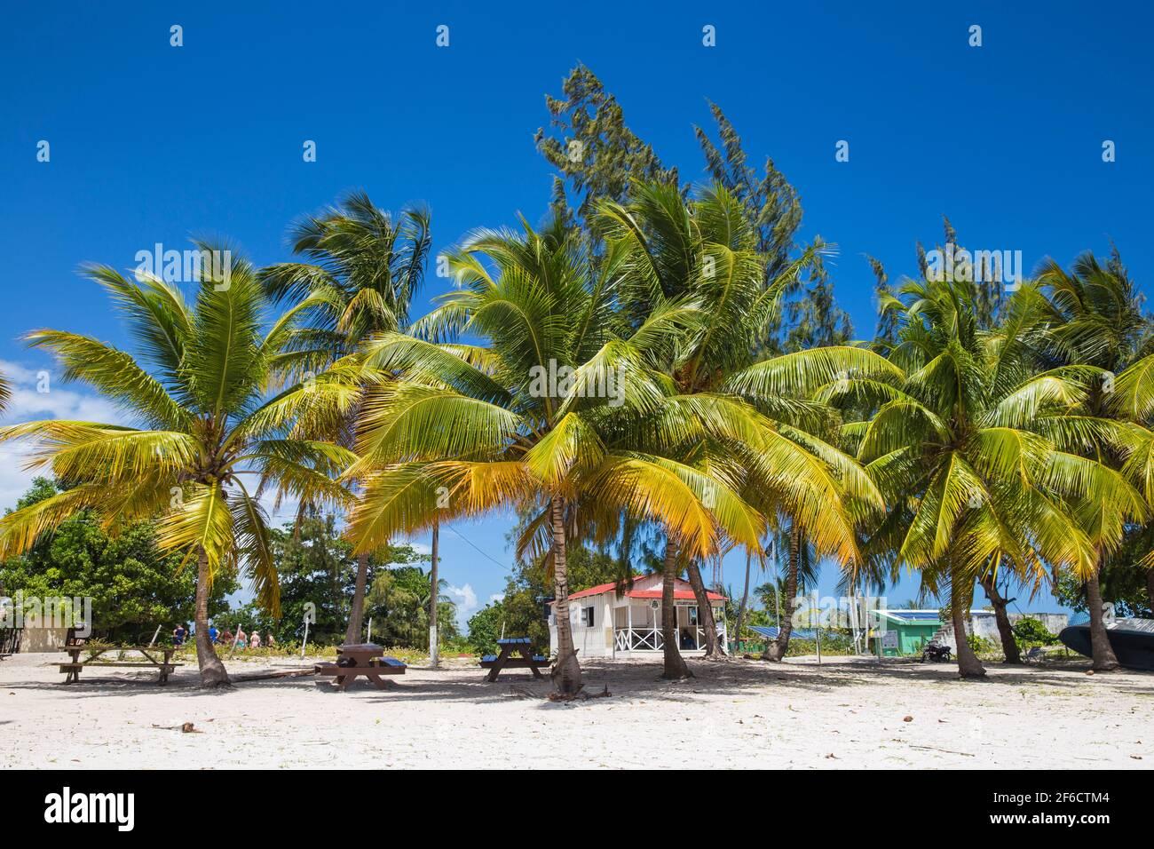 República Dominicana, Punta Cana, Parque Nacional del este, Isla Saona, Playa en el pueblo pesquero de mano Juan Foto de stock