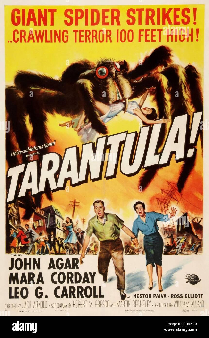 TARÁNTULA 1955 película Universal-Internacional.Posyer por Reynold Brown. Foto de stock