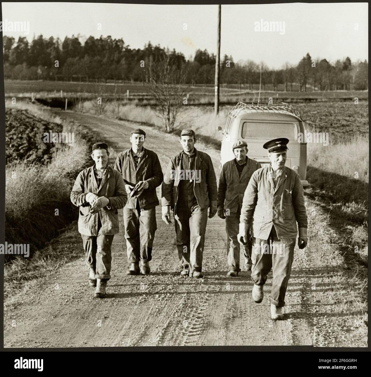 El personal se dirige a la carretera de tierra en el trabajo de mantenimiento de la ruta entre Harsjön y Bälgviken en 1967. Foto de stock