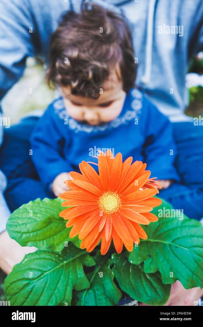 Bebé descubriendo una enorme flor por primera vez Foto de stock