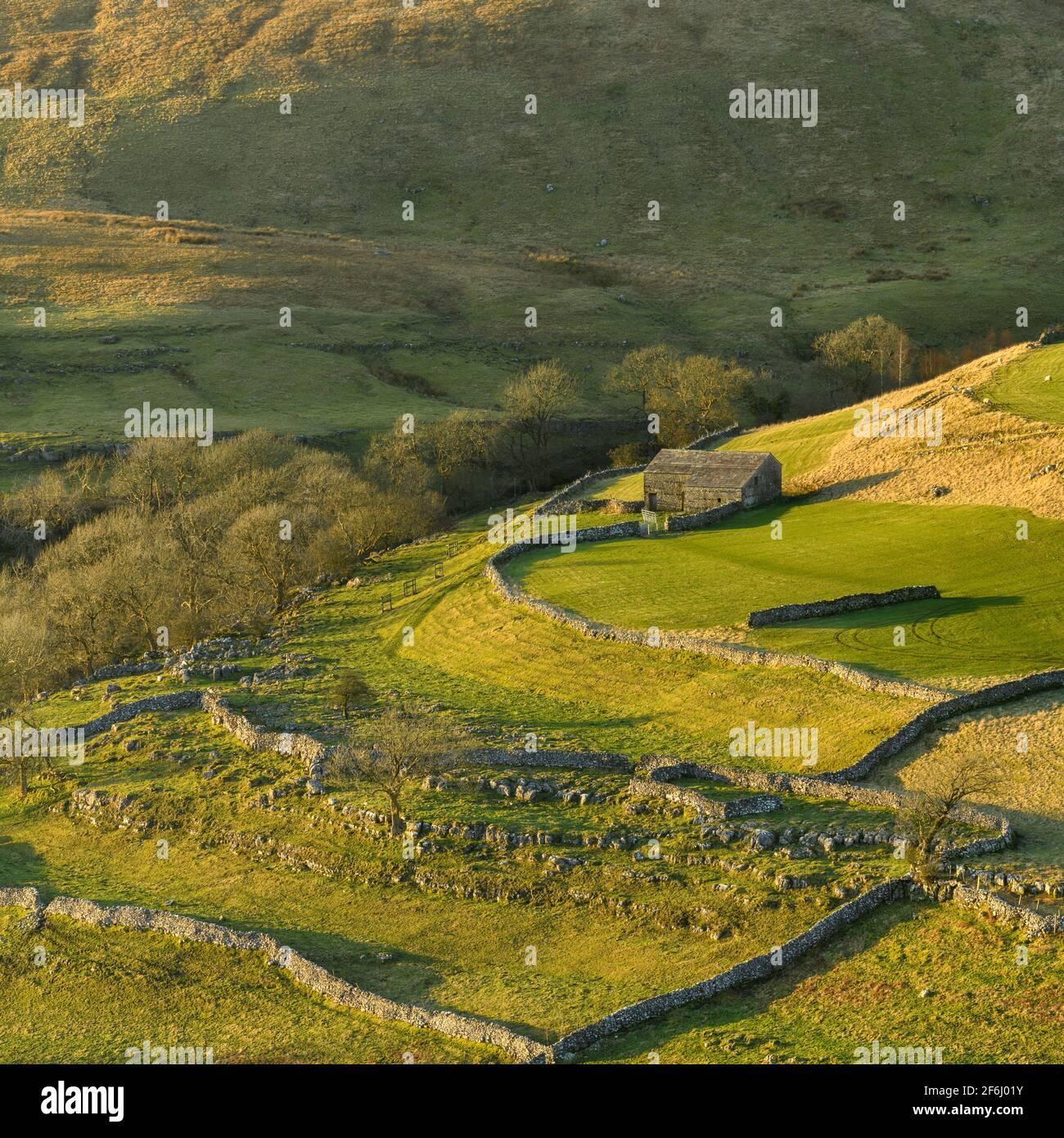 Paisaje escénico soleado Wharfedale (colinas altas, granero de piedra, laderas empinadas de la ladera, paredes de piedra caliza, pastos de pastoreo) - Yorkshire Dales, Inglaterra Reino Unido. Foto de stock