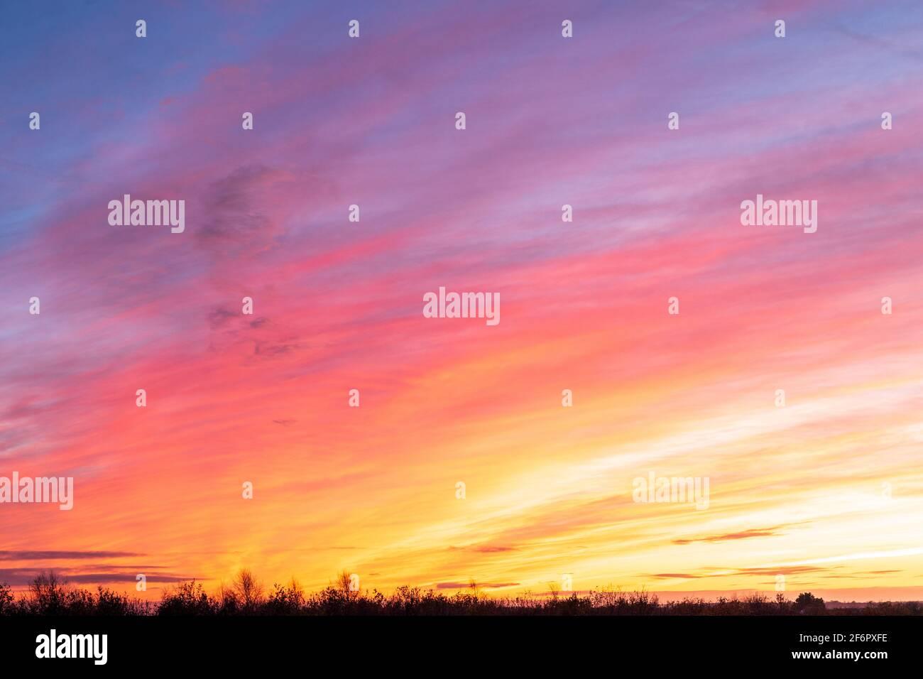 Cielo colorido al amanecer, primera luz en un día invernal en Kent. Horizonte plano bajo en el marco con la visualización de colores en el cielo por encima de antes de la salida del sol. Foto de stock