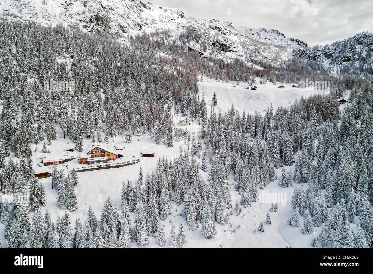 Cabañas y abetos cubiertos de nieve fresca Foto de stock