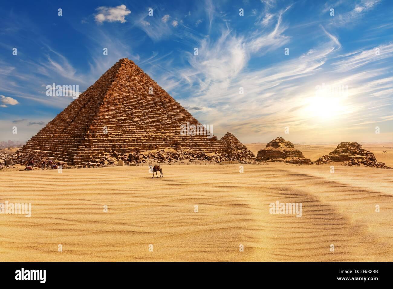 La Pirámide de Menkaure al atardecer en Egipto y un camello cercano, Giza. Foto de stock