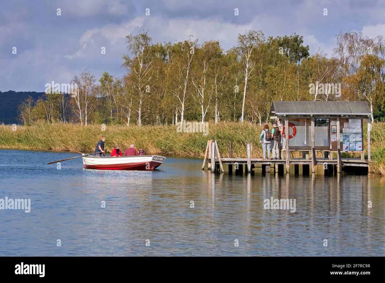Ferry de pasajeros Moritzdorf a través de Baaber Bek en la isla Rügen / Ruegen, bote a remos que conecta Baabe con Sellin en Mecklemburgo-Pomerania Occidental, Alemania Foto de stock