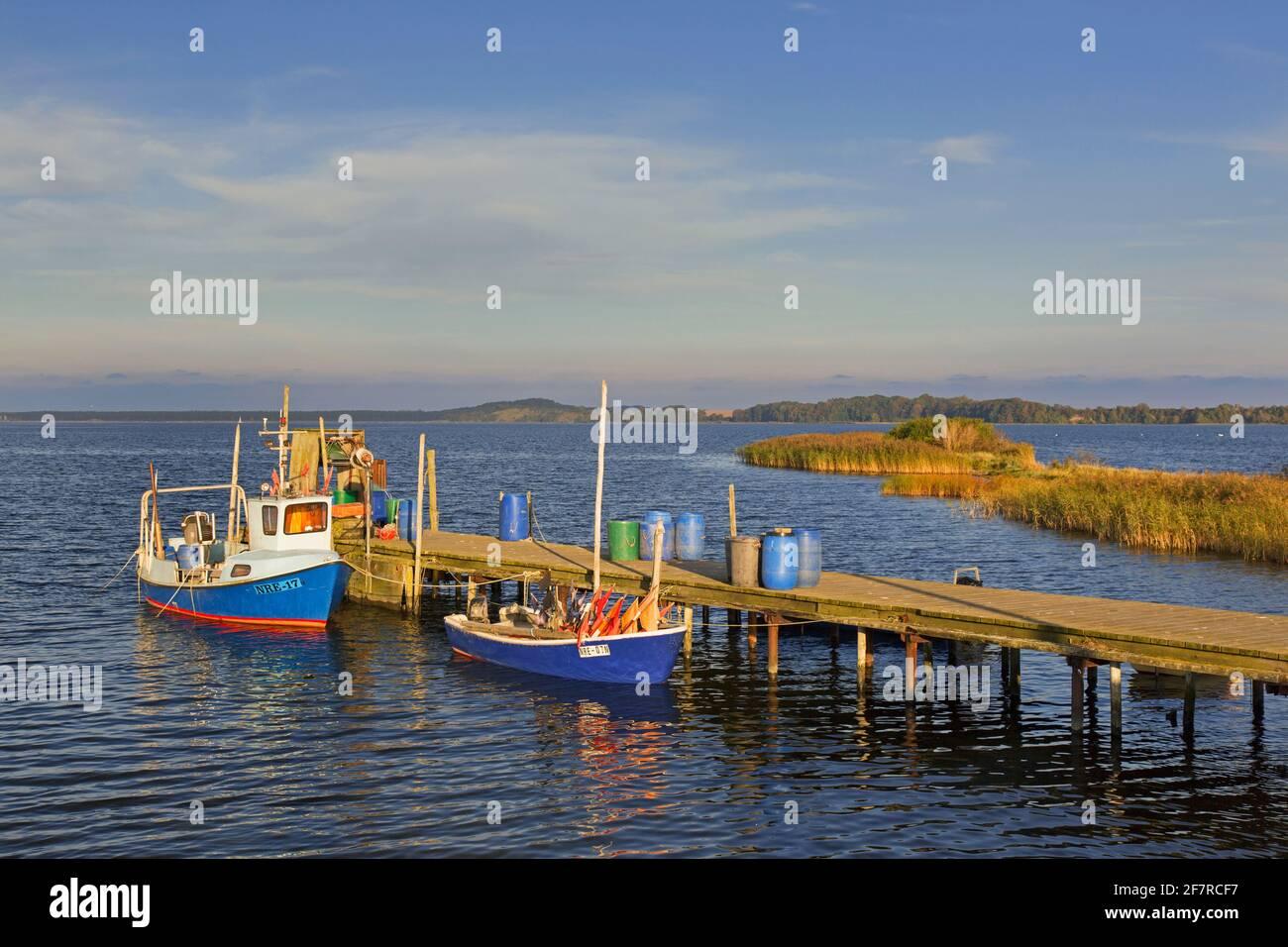 Barcos de pesca amarrados a lo largo de un embarcadero de madera en Neu Reddevitz, Lancken-Granitz en la isla Rügen / Ruegen, Mecklemburgo Pomerania Occidental, Alemania Foto de stock