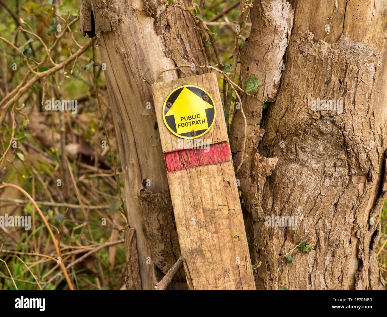 Un signo de sendero roto en el país contra el que no sirve de nada un árbol Foto de stock