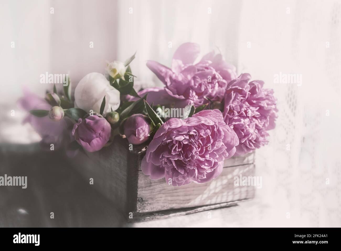 Románticas peonías de color rosa vintage en una antigua caja texturizada de madera. Espacio para copias. Foto de stock