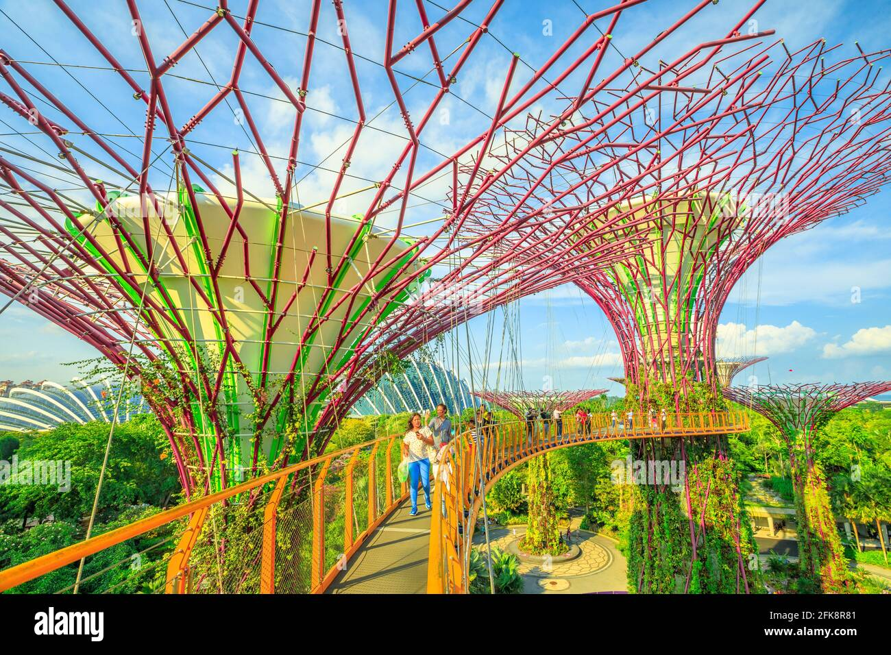 Singapur - Abril 29, 2018: Asia toma selfie turística con teléfono inteligente mientras camina sobre el puente Skyway de Supertree OCBC O Grove en jardines por la Foto de stock