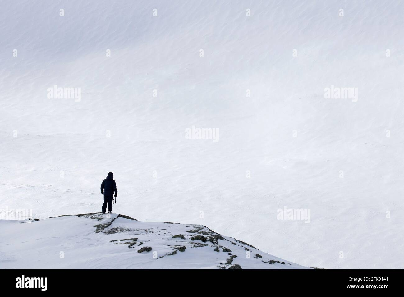 Turista solitaria mirando sobre la llanura cubierta de nieve en el Parque Nacional Dovrefjell–Sunndalsfjella en invierno, Noruega Foto de stock