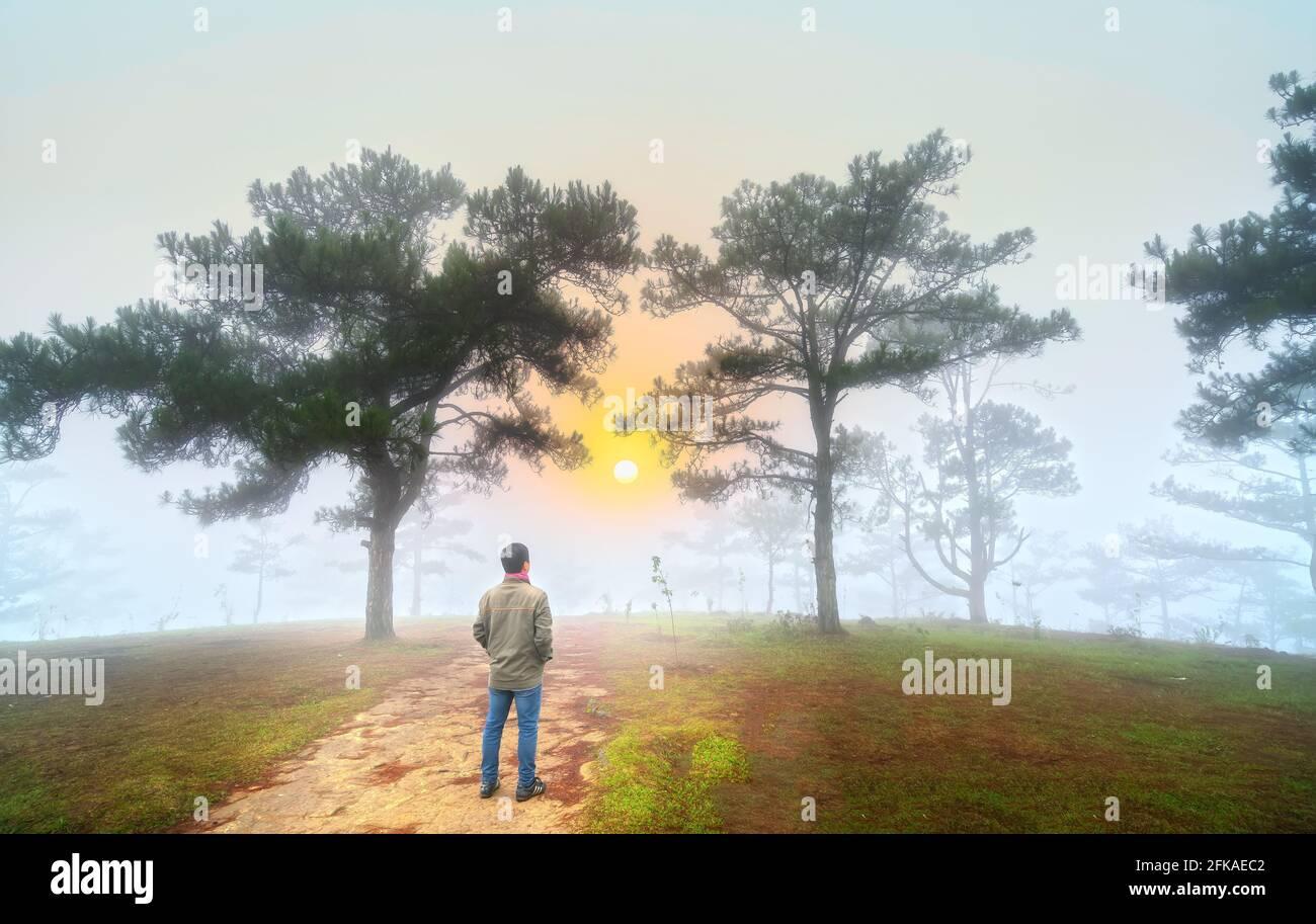 El hombre viajero está de pie mirando el amanecer en una colina de pino de la mañana brumosa en la cima de las tierras altas de Da Lat, Vietnam Foto de stock