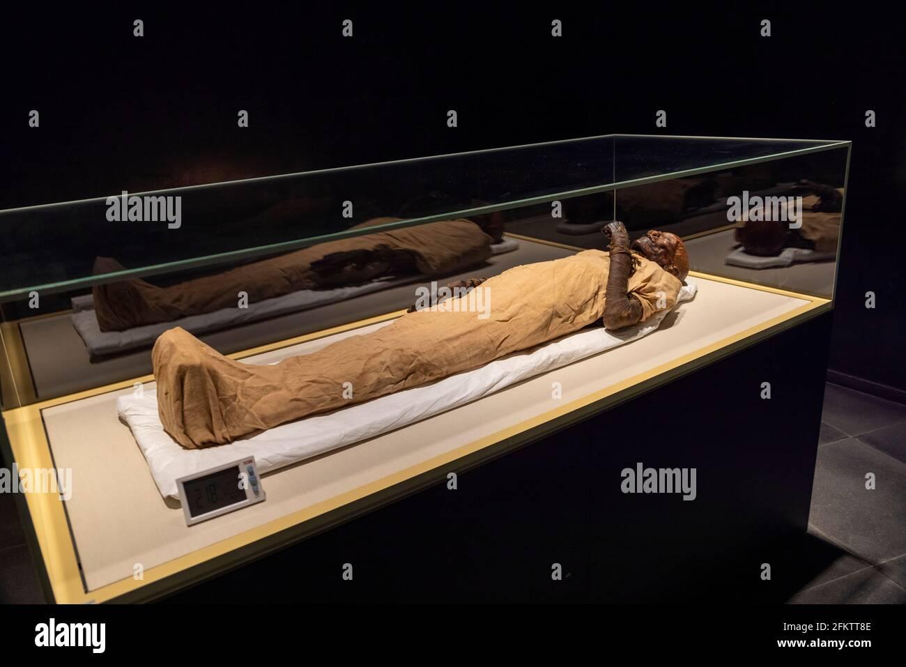 mummy de la reina Hatshepsut (murió 1458 a. C.), Museo Nacional de la Civilización Egipcia Foto de stock