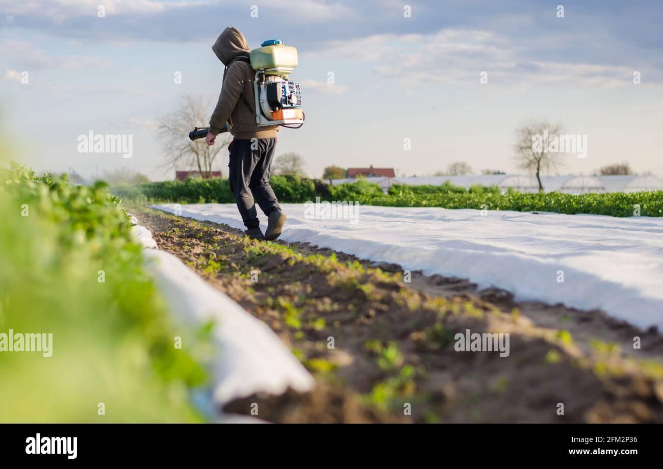 Un granjero procesa un campo de patatas de un rociador de niebla. Proteger los cultivos de plagas e infecciones fúngicas. Control sobre el uso de productos químicos tóxicos Foto de stock