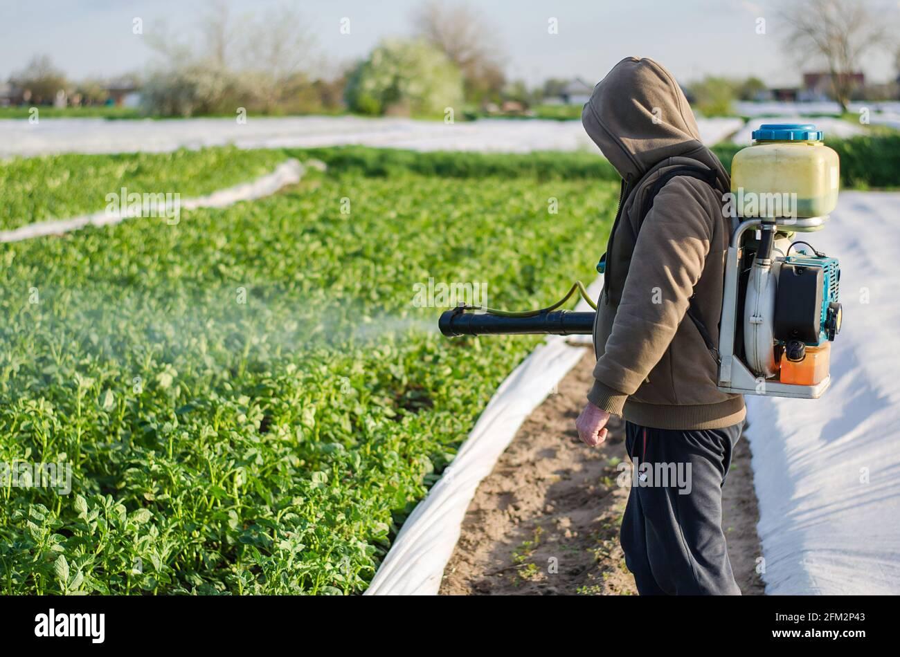 Un agricultor rocía productos químicos en un campo de plantación de papa. Protección de plantas cultivadas contra insectos e infecciones fúngicas. Aumento de la cosecha. Control Foto de stock