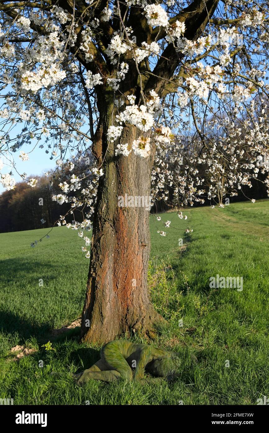 Arte de la Naturaleza: Flor de cereza fotoshooting con modelo Lana como la pintura corporal de hierba en Groeninger Feld en Hameln, el 5 de mayo de 2021 - Bodypainting artista: Joerg Duesterwald Foto de stock