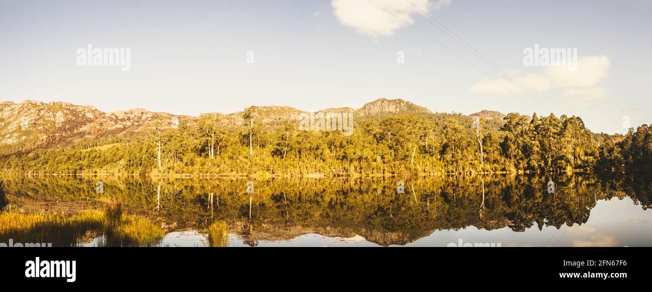 Panorámica de gran angular treescape en un lago en armonía reflectante de la tarde. Tullah, Tasmania occidental, Australia Foto de stock