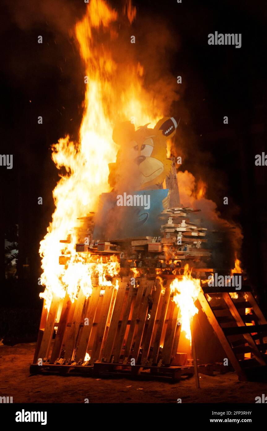 Bruin Bear es quemado como parte de la conquista de USC, una tradición en la Universidad del Sur de California que significa la rivalidad con UCLA. Foto de stock