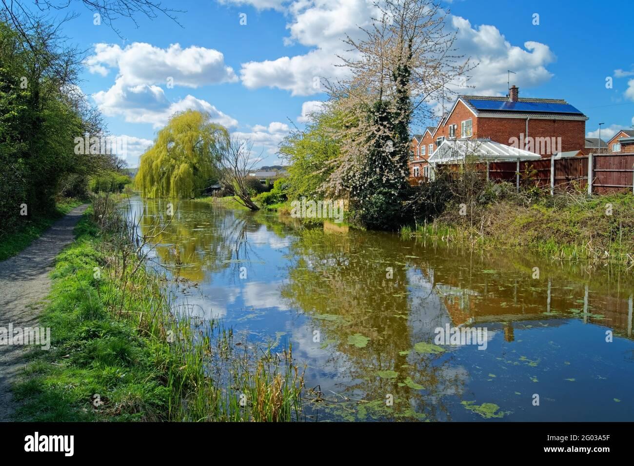 Reino Unido, South Yorkshire, Barnsley, Elsecar Canal y sendero con flor en flor Foto de stock