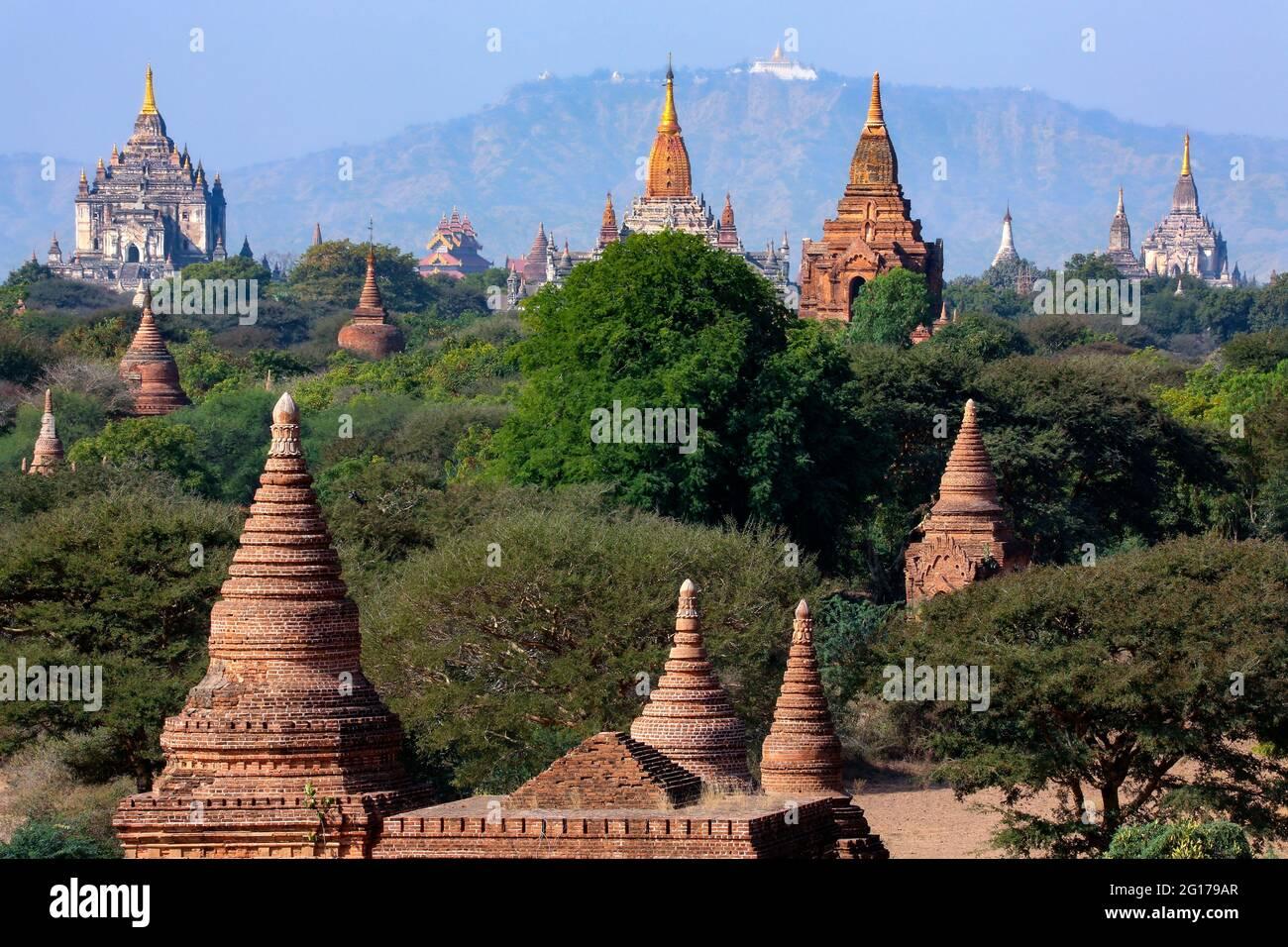 Los antiguos templos budistas de la zona arqueológica de Bagan, Myanmar (Birmania). Foto de stock