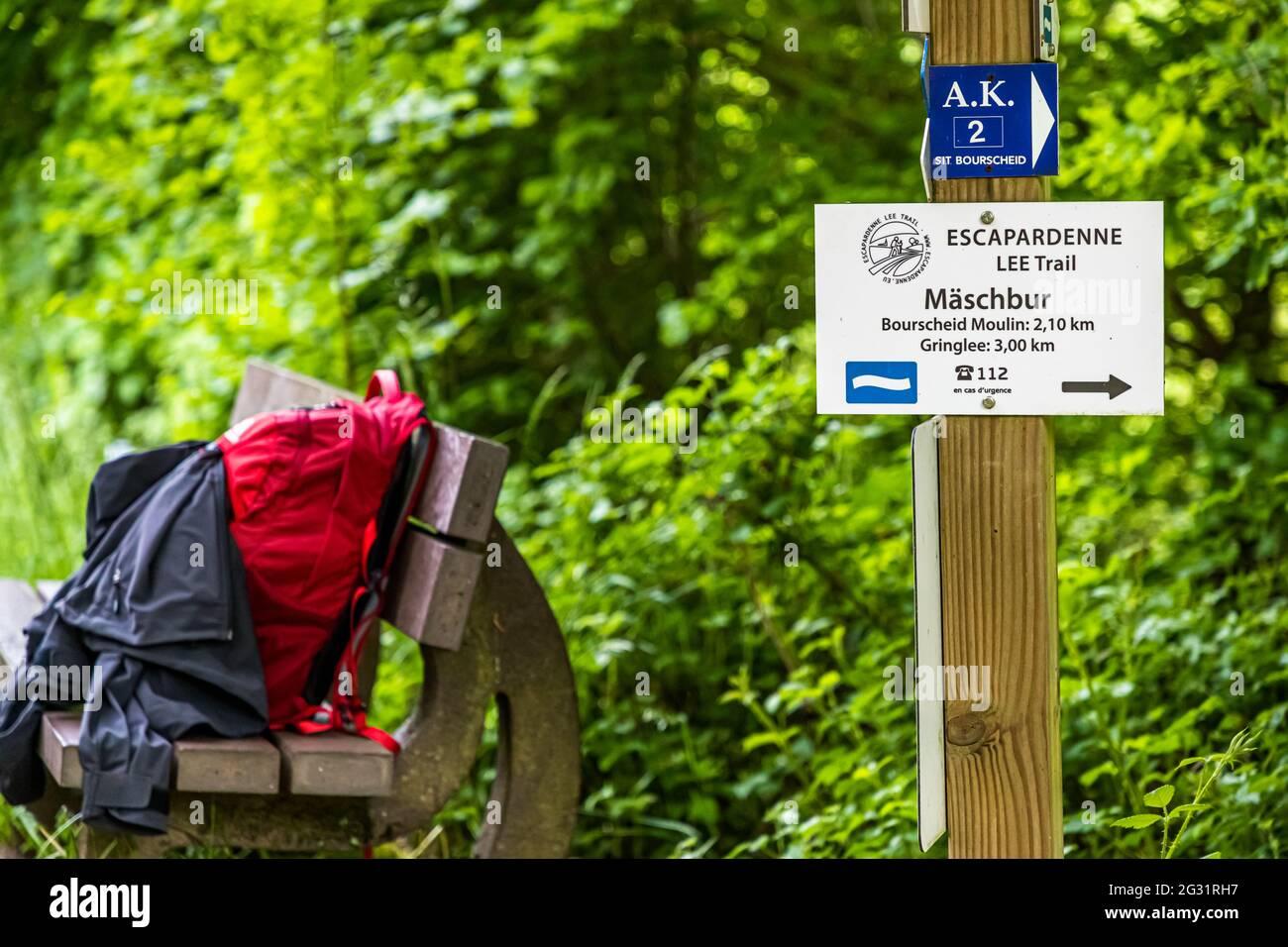Señales en la ruta de senderismo Escardienne LEE Trail cerca de Lipperscheid, Luxemburgo. La primera subida empinada fuera del valle del Sauer se hace. El signo de la onda blanca sobre fondo azul es el signo oficial del camino Foto de stock