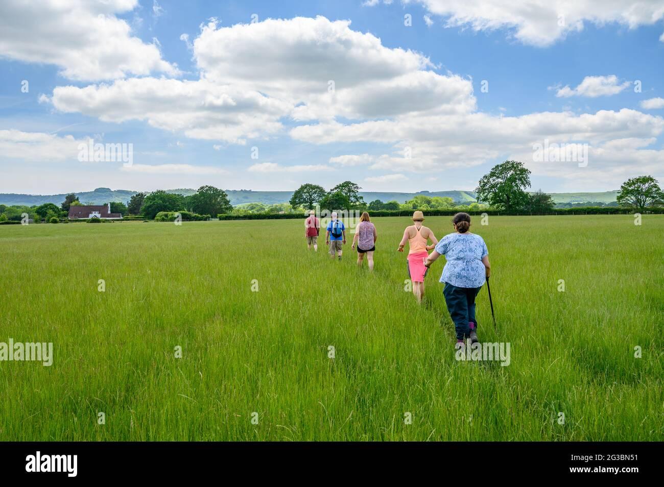Un grupo de jugadores caminando sobre un campo de hierba alta con los South Downs subiendo en la distancia en East Sussex, Inglaterra. Foto de stock