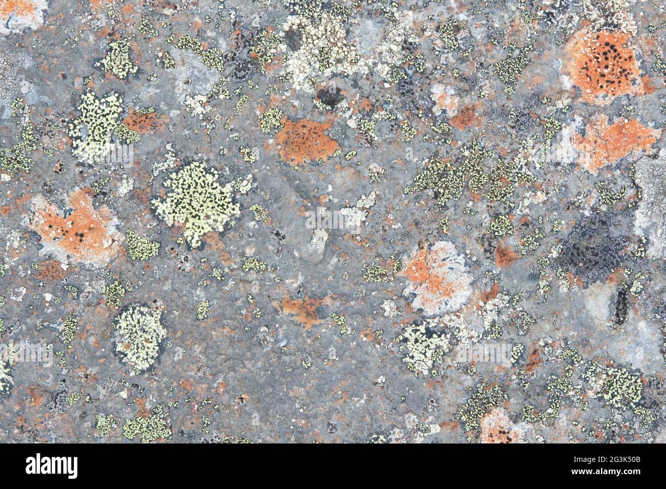Cierre la textura vieja de la roca o de la piedra Foto de stock