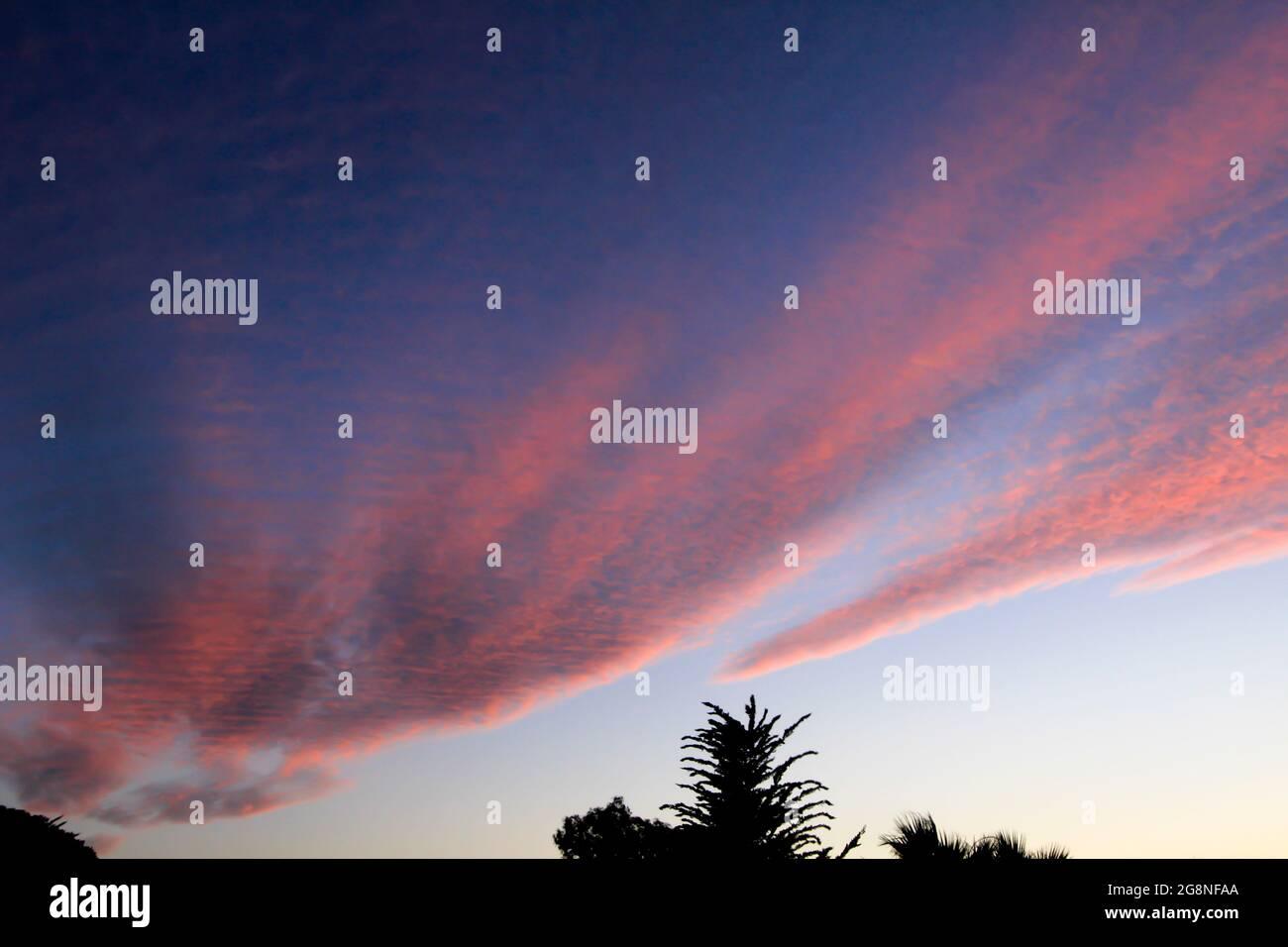 Espectacular puesta de sol de color rosa en el bosque de España Foto de stock