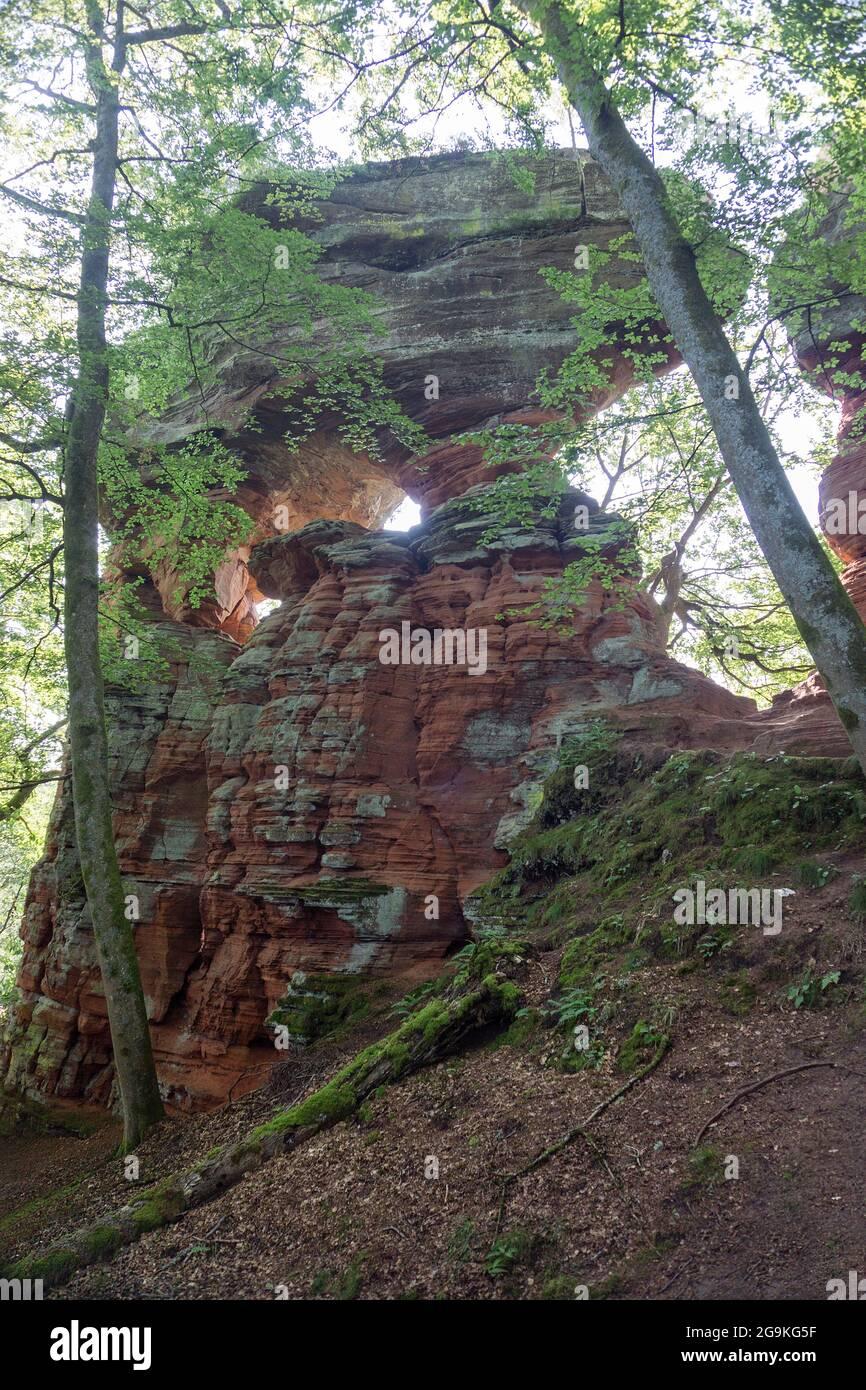 Old Castle Rock (Altschlossfelsen), torres de piedra de arena roja en el bosque Palatino, Eppenbrunn, Renania-Palatinado, Alemania Foto de stock