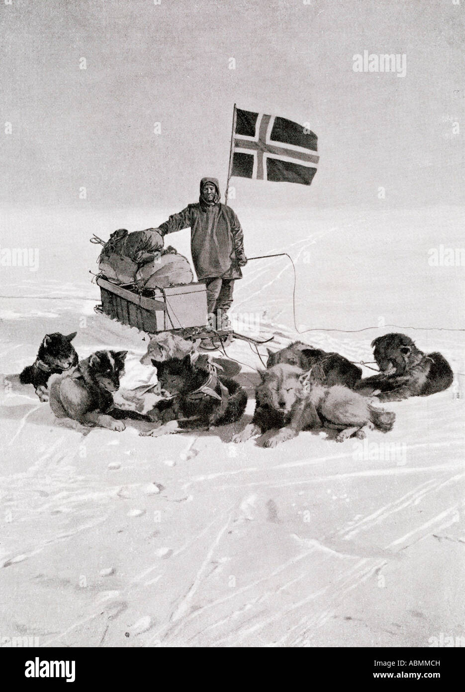 Captain Roald Engelbregt Gravning Amundsen,1872 -1928.  Seen here at the South pole under the Norwegian flag. Foto de stock