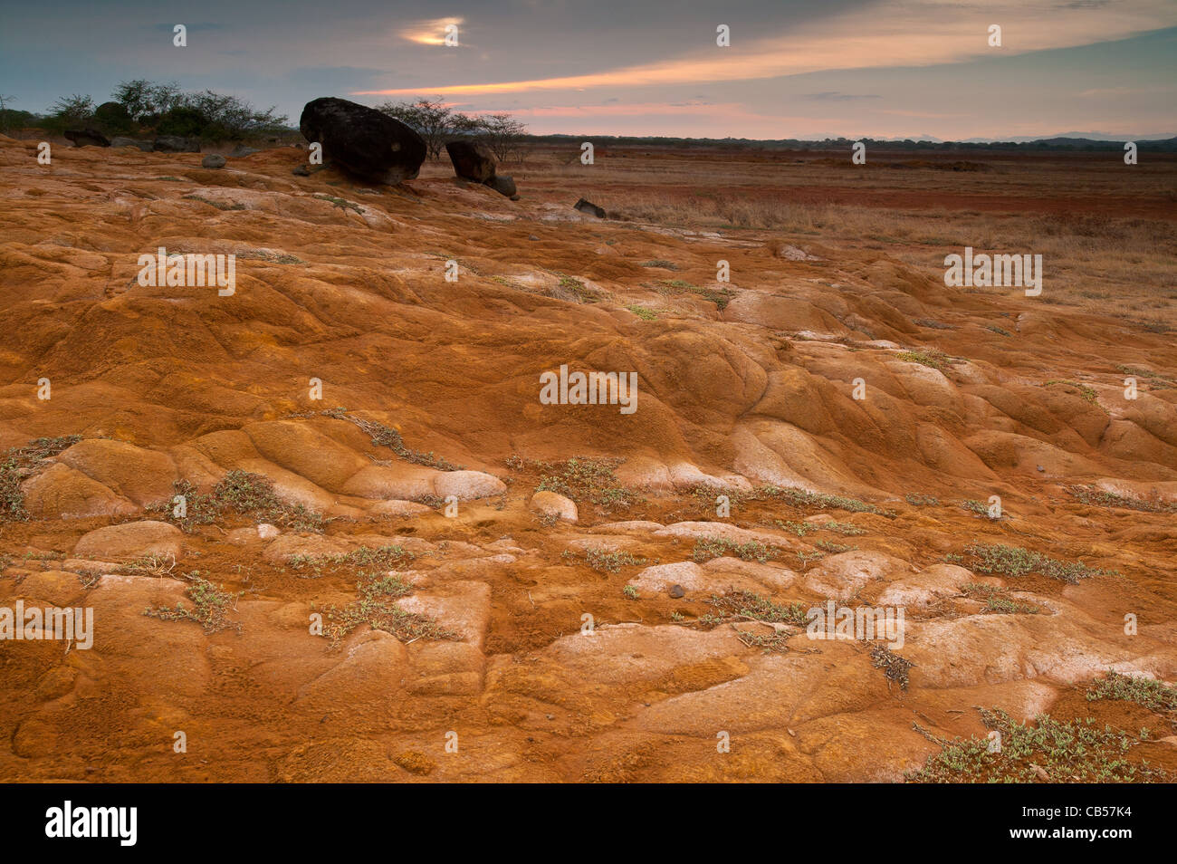 Desert landscape in Sarigua national park, Herrera province, Republic of Panama. Foto de stock