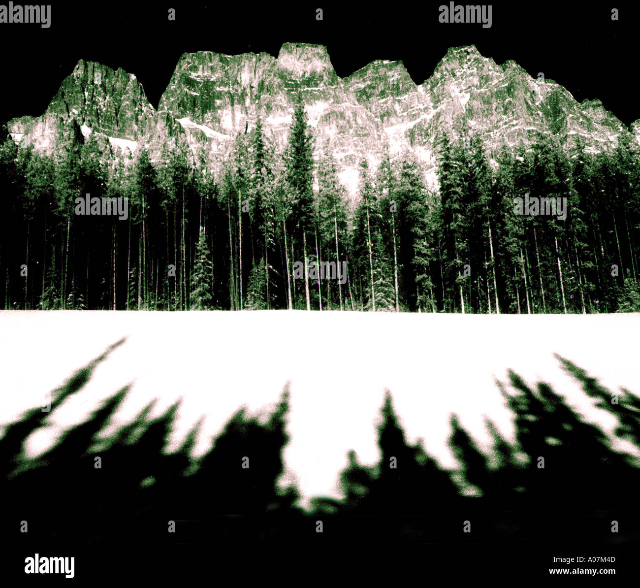 Desafío, el tamaño horizontal, al aire libre, en blanco y negro, Francia, Árbol, Día, Nieve, dunas de arena, Haute-Savoie, aisladas de personas. Imagen De Stock