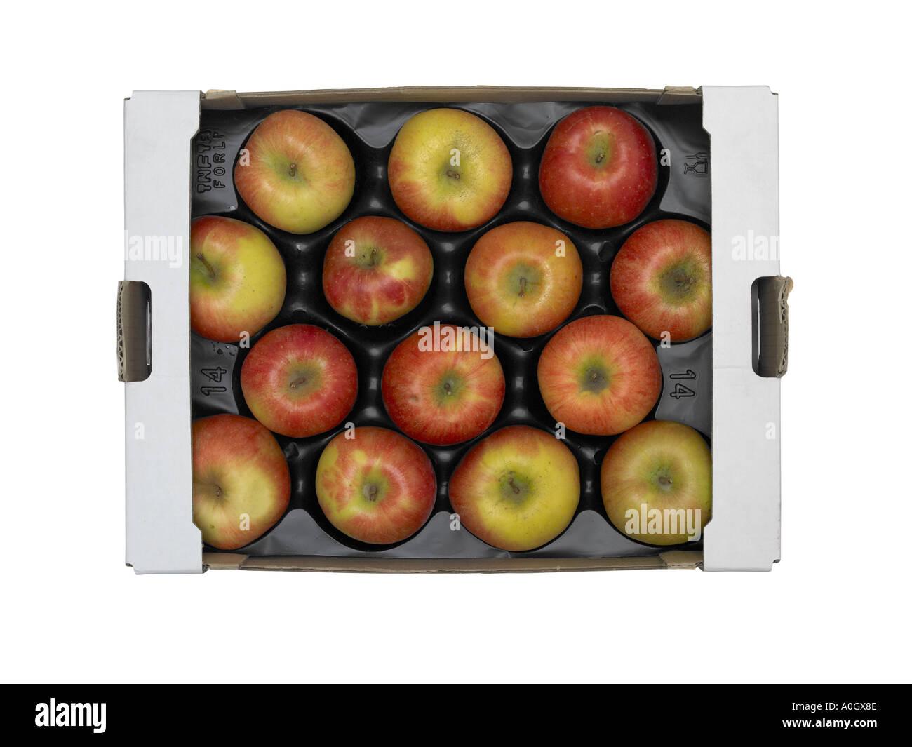 Catorce manzanas rojas frescas en bandeja de ultramarinos de cartón Imagen De Stock