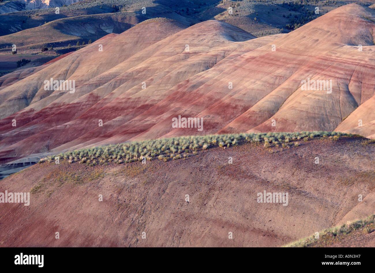 Cerros pintados John Día yacimientos fósiles Monumento Nacional de Oregon Oriental EE.UU. cambio de color con la hora del día el clima contenido de humedad Foto de stock