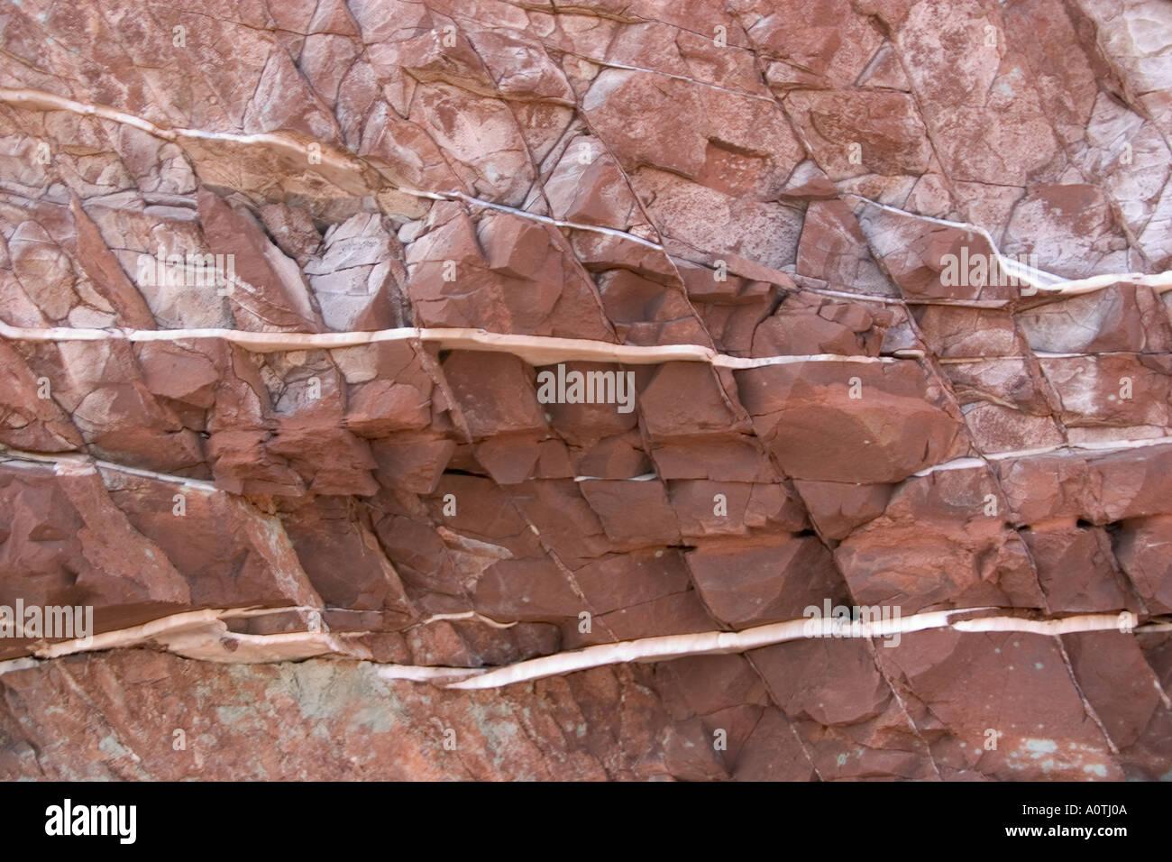 Venas de alabastro en roca sedimentaria Foto de stock