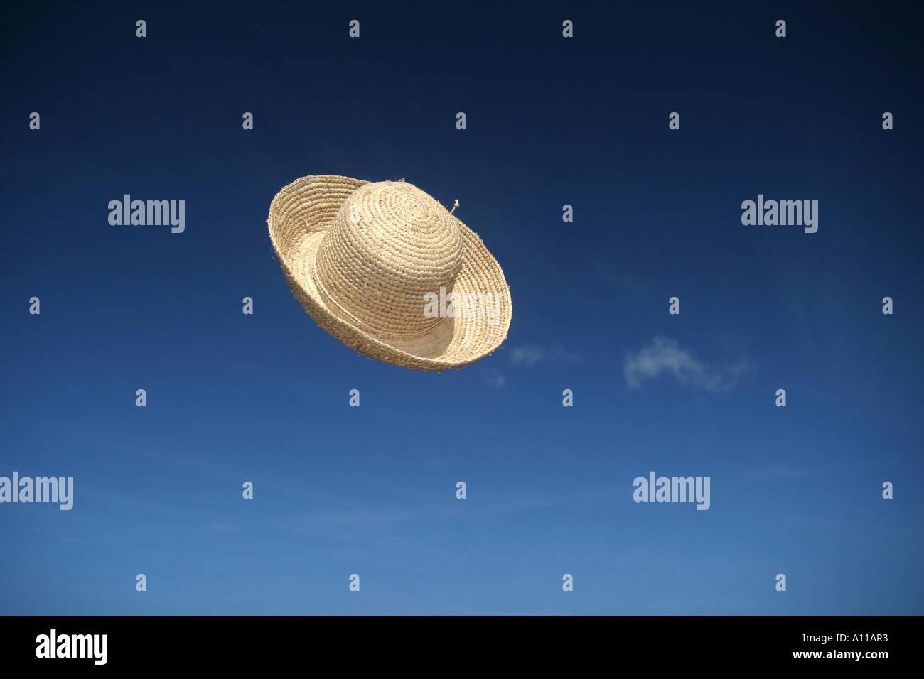 sombrero 2 Imagen De Stock