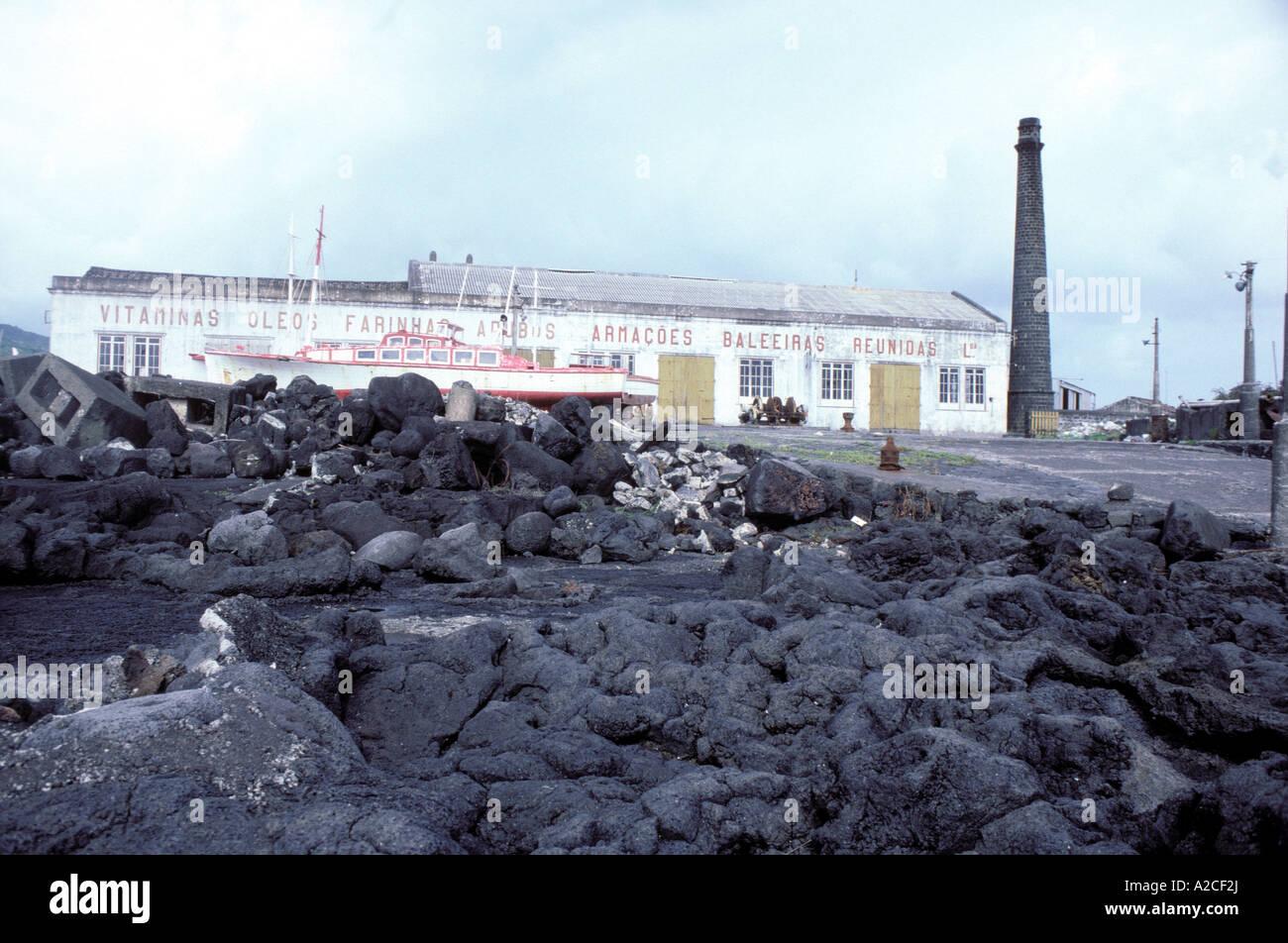 La estación ballenera abandonada plagada de huesos de ballena Foto de stock