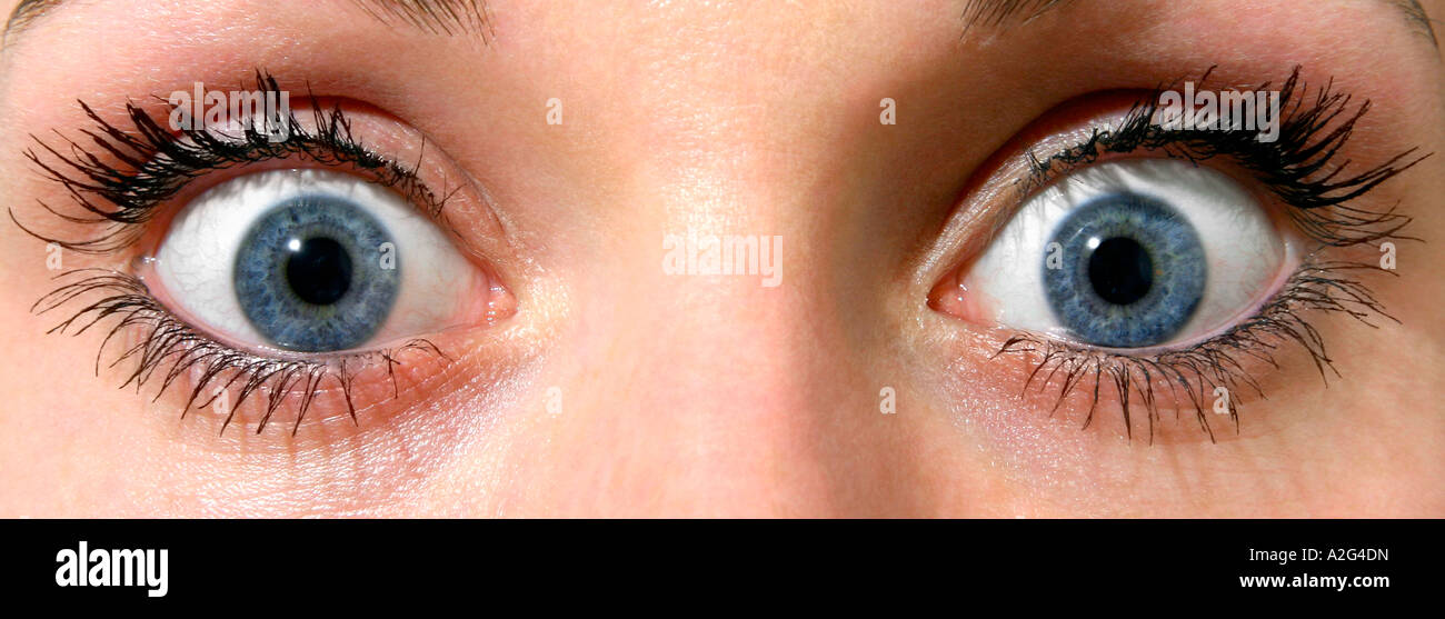 Ojos Sorprendidos Foto Imagen De Stock 10513376 Alamy