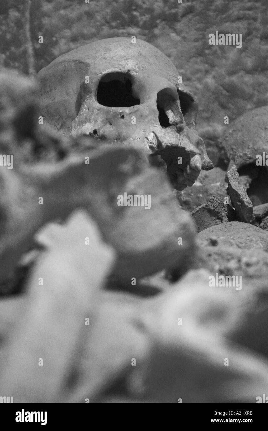 Montón de cráneo y huesos humanos reales, en blanco y negro Foto ...