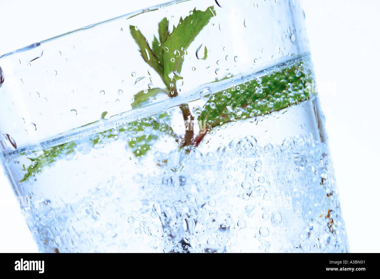 Agua mineral con hoja de menta Imagen De Stock