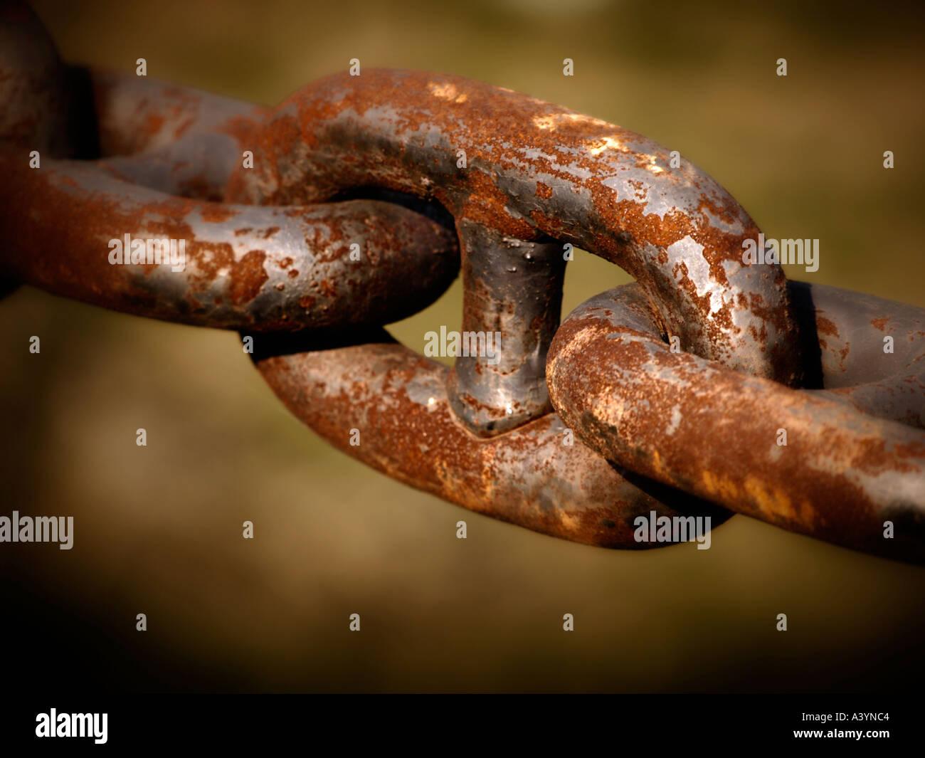 Rusty link de gigantescos buques cadena Imagen De Stock