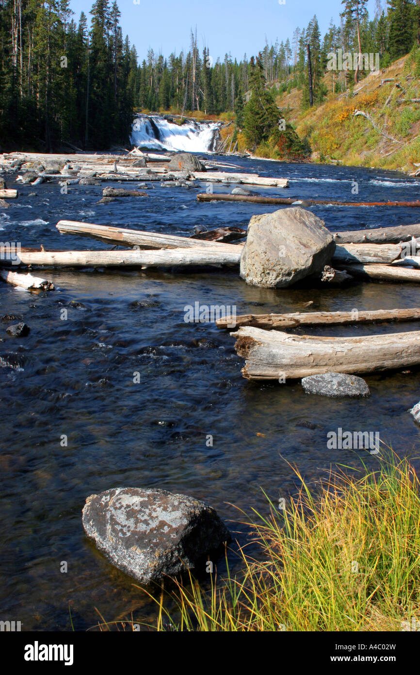 Lewis Falls, el parque nacional Yellowstone, Wyoming Foto de stock