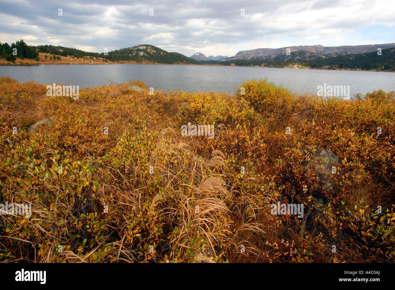 Lago de la isla fuera de la autopista, beartooth Shoshone National Forest, Wyoming Foto de stock