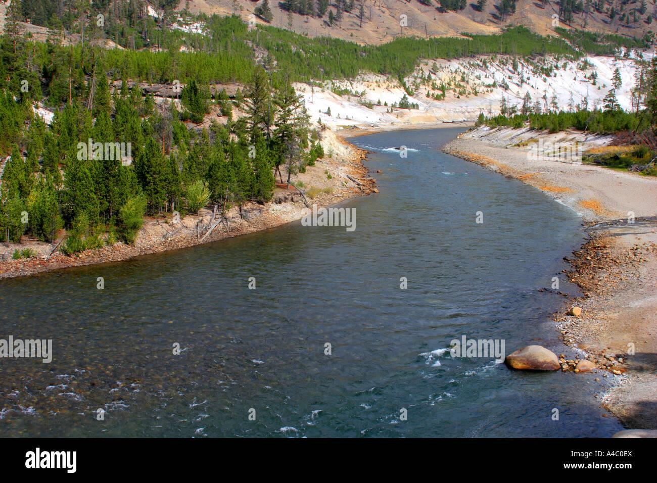 Río Yellowstone, el parque nacional Yellowstone, Wyoming Foto de stock