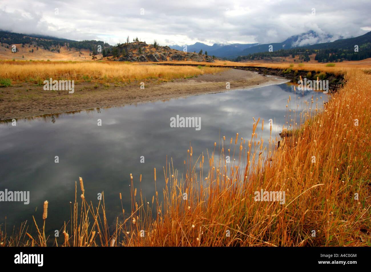 Slough Creek, el parque nacional Yellowstone, Wyoming Foto de stock