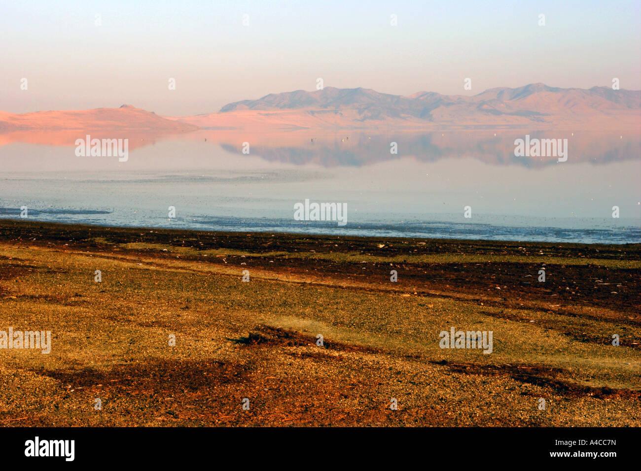 Great Salt Lake sunrise, Utah Foto de stock
