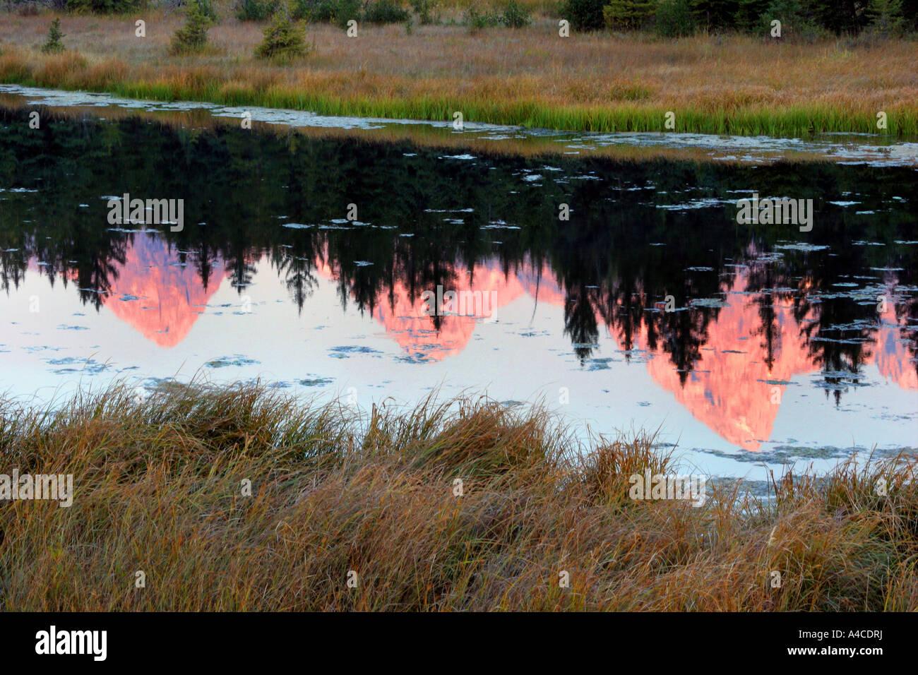 Amanecer reflexión sobre el Grand Tetons Foto de stock