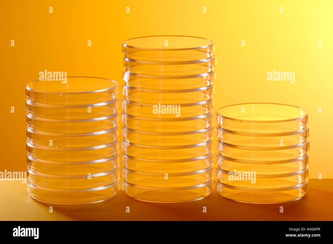 Placas de Petri científico Imagen De Stock