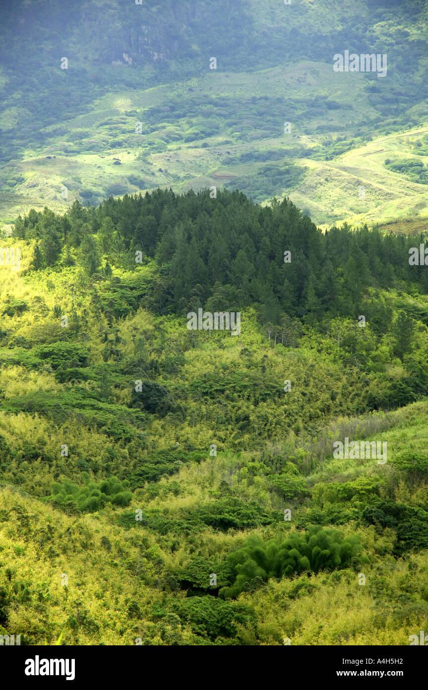 Moderno Uñas Fiji Festooning - Ideas de Pintar de Uñas - ayagenesis.info