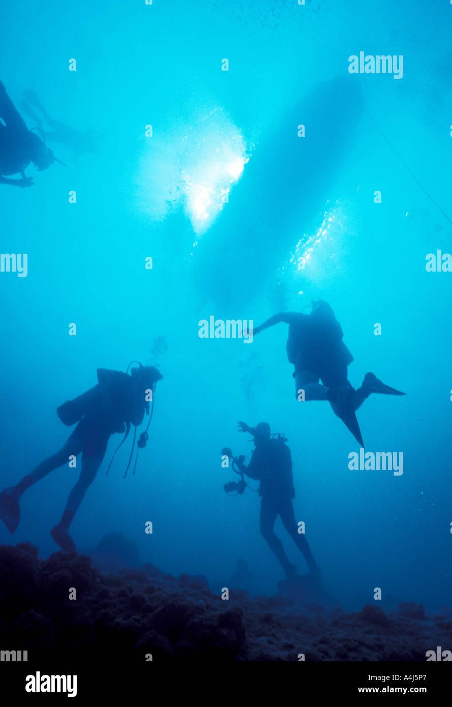 Buzos submarinos siluetas nadar a la superficie con el barco de buceo y el sol brillante en segundo plano. Imagen De Stock