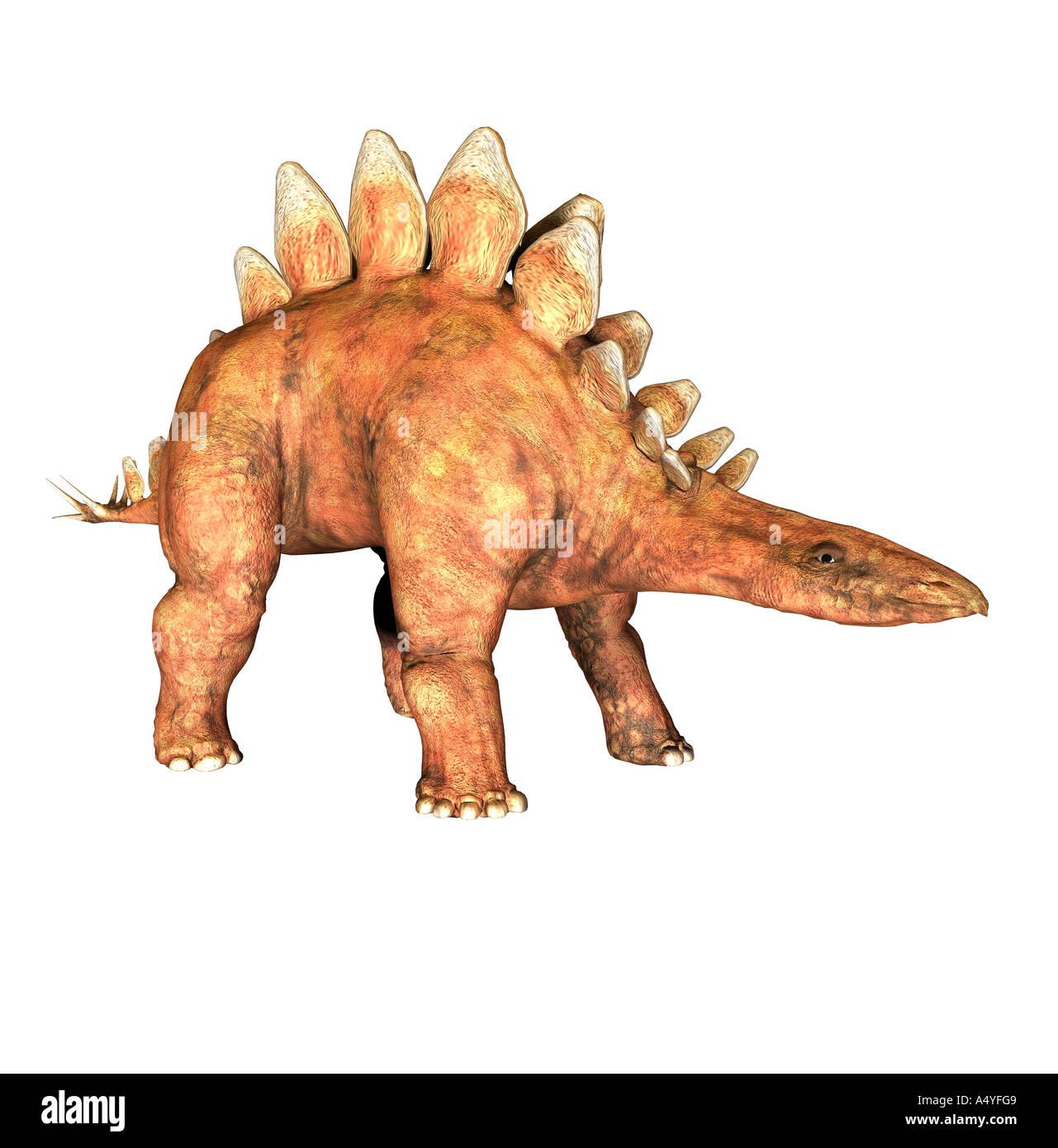 el stegosaurus es también llamada placa y lagarto ocurrió en el